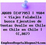 JQ689 [EXF795]   Y604 – Viajes Falabella busca Ejecutivo de Ventas Ovalle en Chile en Chile en Chile   (C.867)