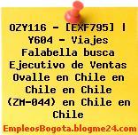 OZY116 – [EXF795] | Y604 – Viajes Falabella busca Ejecutivo de Ventas Ovalle en Chile en Chile en Chile (ZM-044) en Chile en Chile