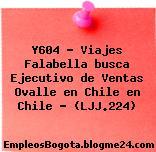 Y604 – Viajes Falabella busca Ejecutivo de Ventas Ovalle en Chile en Chile – (LJJ.224)