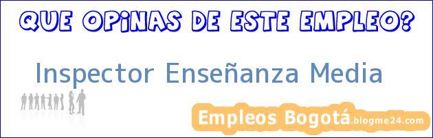 Inspector Enseñanza Media