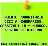 AGENTE COMUNITARIO CECI A HONORARIOS, CARRIZALILLO – HUASCO, REGIÓN DE ATACAMA