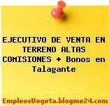 EJECUTIVO DE VENTA EN TERRENO ALTAS COMISIONES + Bonos en Talagante