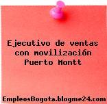 Ejecutivo de ventas con movilización Puerto Montt