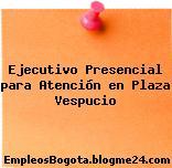Ejecutivo Presencial Para Atención En Plaza Vespucio
