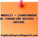 NMU913] – COORDINADOR DE FORMACIÓN DOCENTE – IQUIQUE