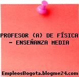 PROFESOR (A) DE FÍSICA – ENSEÑANZA MEDIA