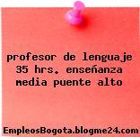 profesor de lenguaje 35 hrs. enseñanza media puente alto