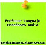 Profesor Lenguaje Enseñanza media