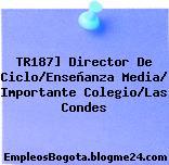 TR187] Director De Ciclo/Enseñanza Media/ Importante Colegio/Las Condes