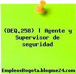 (DEQ.258) | Agente y Supervisor de seguridad