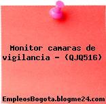 Monitor camaras de vigilancia – (QJQ516)