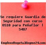 Se requiere Guardia de Seguridad con curso OS10 para Peñaflor | S487