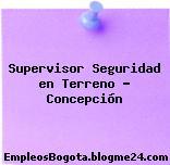 Supervisor Seguridad en Terreno – Concepción