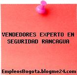 VENDEDORES EXPERTO EN SEGURIDAD RANCAGUA