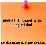 WF656] | Guardia de Seguridad